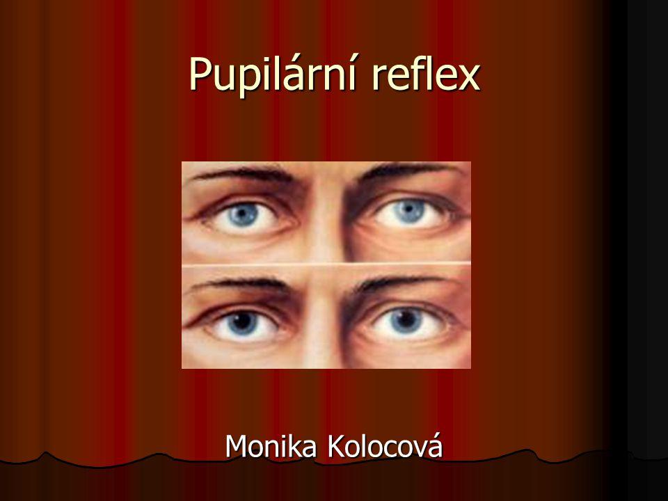 Dráha pupilárního reflexu = odbočka z 3.N zrakové dráhy – k jádrům, které zajistí provedení miosy nebo mydriasy centrum – v area pretectalis centrum – v area pretectalis aferentní část – 1.– 3.