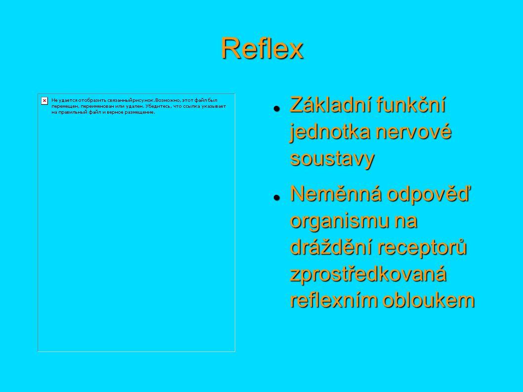 Reflex Základní funkční jednotka nervové soustavy Základní funkční jednotka nervové soustavy Neměnná odpověď organismu na dráždění receptorů zprostředkovaná reflexním obloukem Neměnná odpověď organismu na dráždění receptorů zprostředkovaná reflexním obloukem