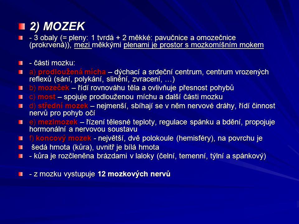 2) MOZEK - 3 obaly (= pleny: 1 tvrdá + 2 měkké: pavučnice a omozečnice (prokrvená)), mezi měkkými plenami je prostor s mozkomíšním mokem - části mozku