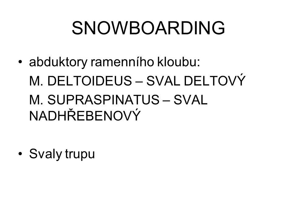 SNOWBOARDING abduktory ramenního kloubu: M. DELTOIDEUS – SVAL DELTOVÝ M. SUPRASPINATUS – SVAL NADHŘEBENOVÝ Svaly trupu