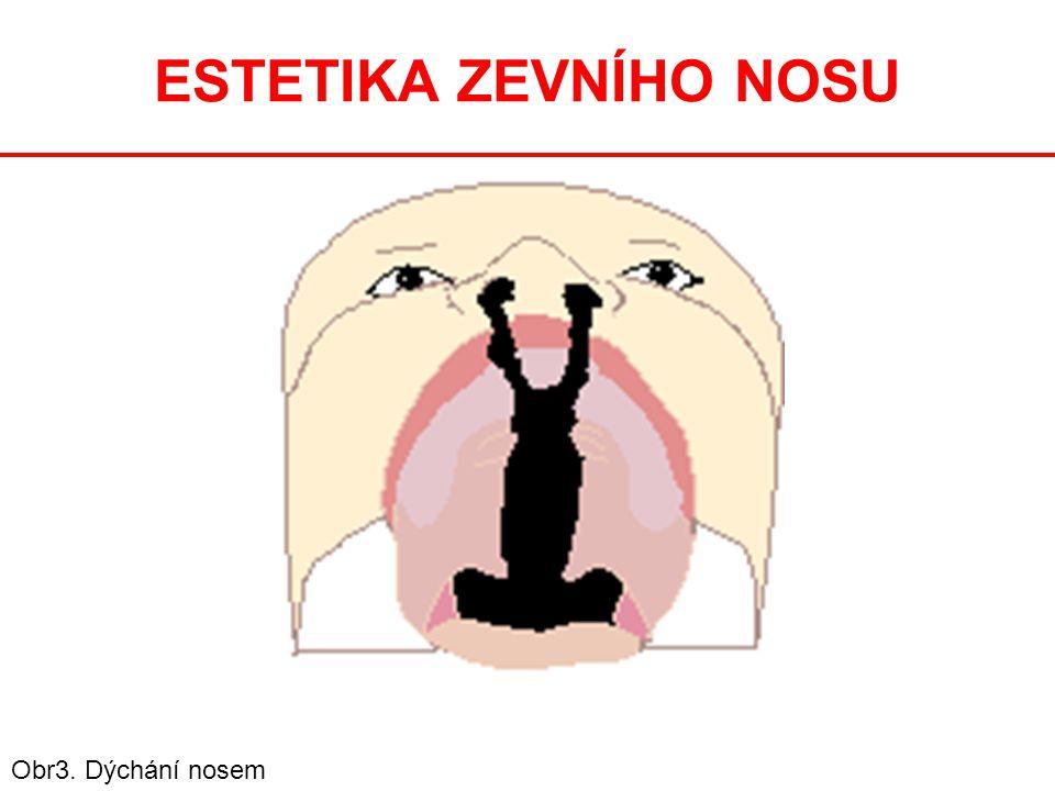 ESTETIKA ZEVNÍHO NOSU Obr3. Dýchání nosem