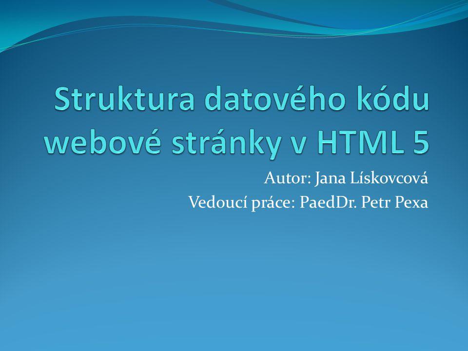 Autor: Jana Lískovcová Vedoucí práce: PaedDr. Petr Pexa