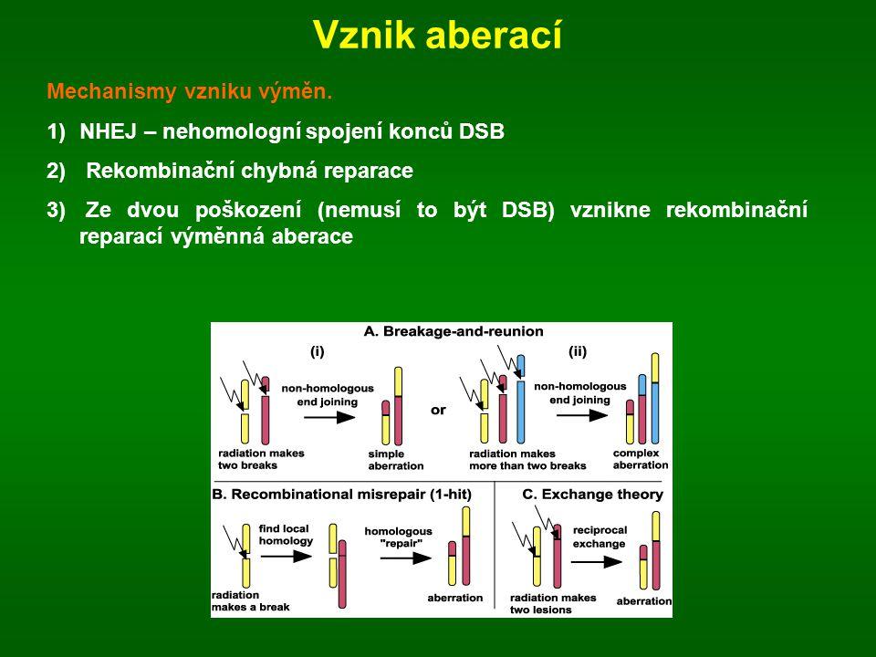 Vznik aberací Mechanismy vzniku výměn. 1)NHEJ – nehomologní spojení konců DSB 2) Rekombinační chybná reparace 3) Ze dvou poškození (nemusí to být DSB)