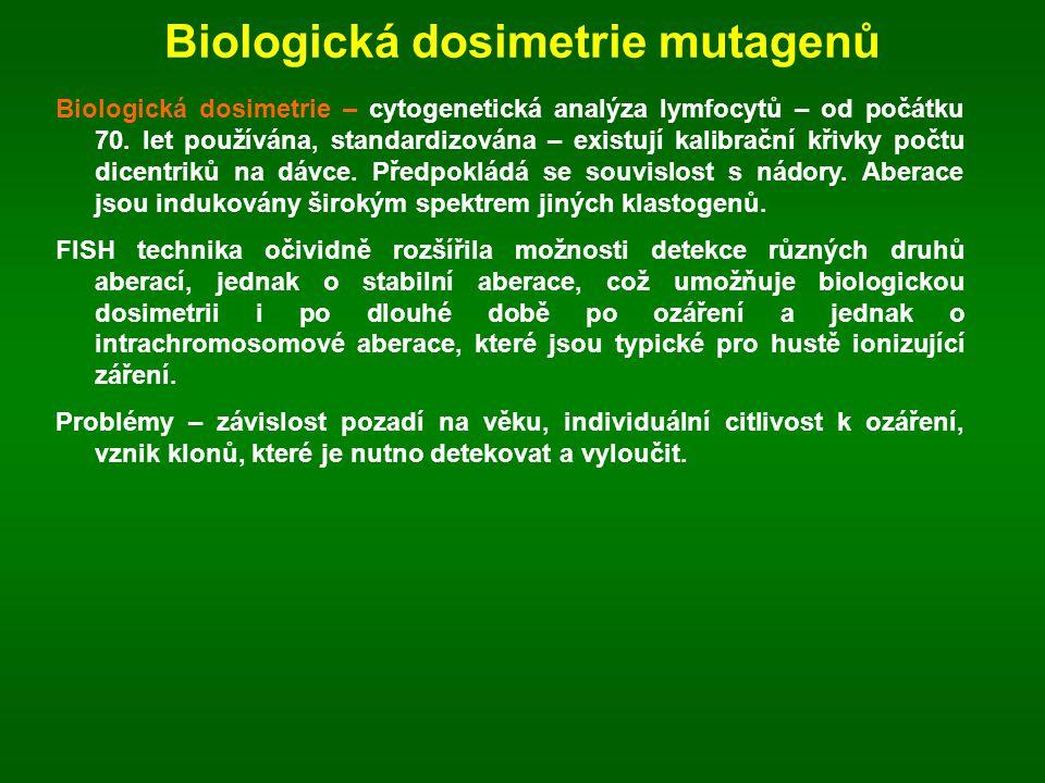 Biologická dosimetrie mutagenů Biologická dosimetrie – cytogenetická analýza lymfocytů – od počátku 70. let používána, standardizována – existují kali