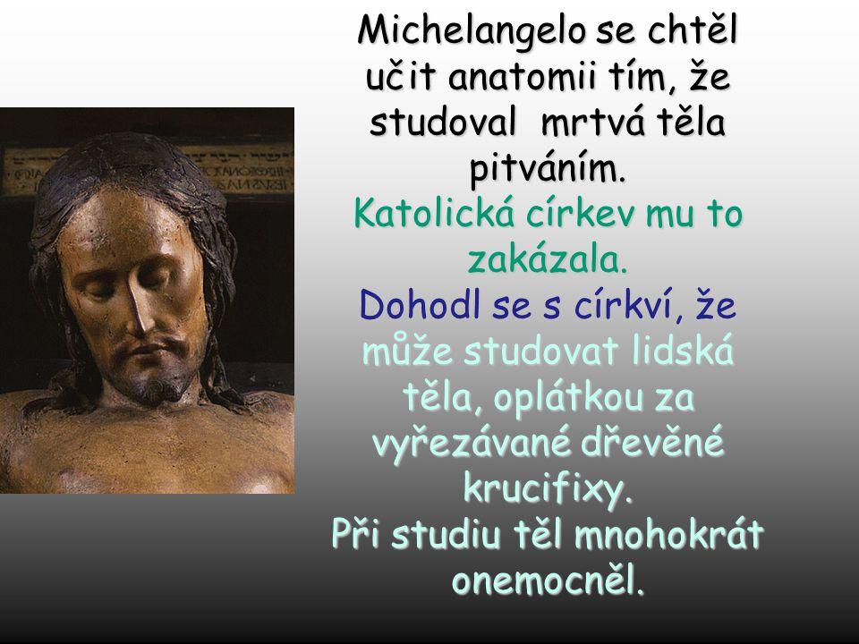 Michelangelovo mládí: Vyučil se ve 12-ti letech jako malíř ve Florencii.Vyučil se ve 12-ti letech jako malíř ve Florencii. Žil s vládnoucí rodinnou Me