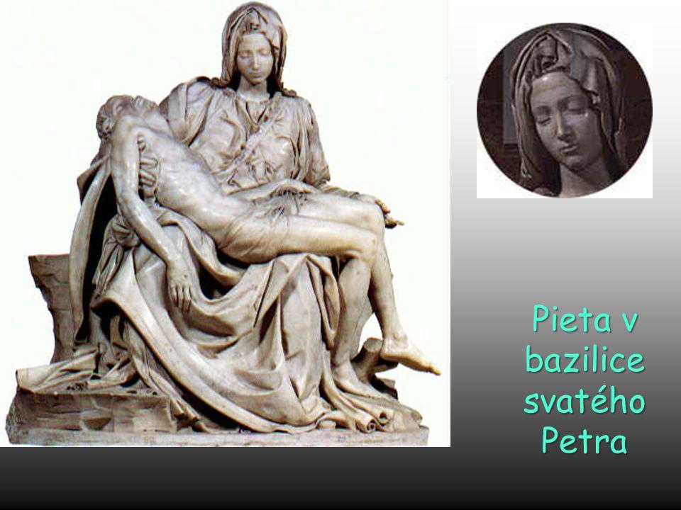 Michelangelo se chtěl učit anatomii tím, že studoval mrtvá těla pitváním. Katolická církev mu to zakázala. Dohodl se s církví, že může studovat lidská