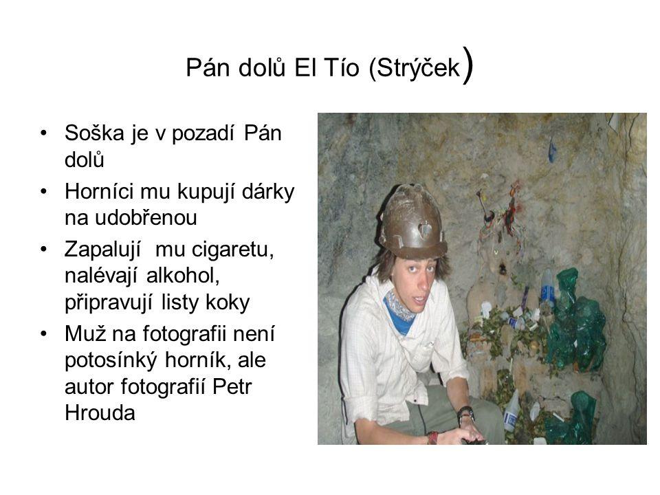 Pán dolů El Tío (Strýček ) Soška je v pozadí Pán dolů Horníci mu kupují dárky na udobřenou Zapalují mu cigaretu, nalévají alkohol, připravují listy koky Muž na fotografii není potosínký horník, ale autor fotografií Petr Hrouda