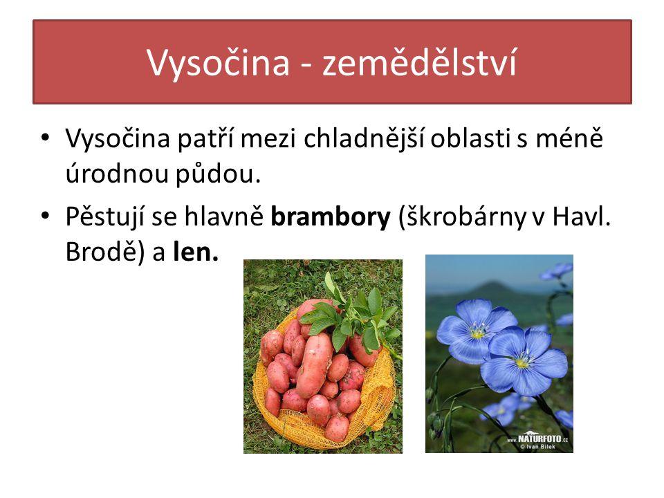 Vysočina - zemědělství Vysočina patří mezi chladnější oblasti s méně úrodnou půdou. Pěstují se hlavně brambory (škrobárny v Havl. Brodě) a len.