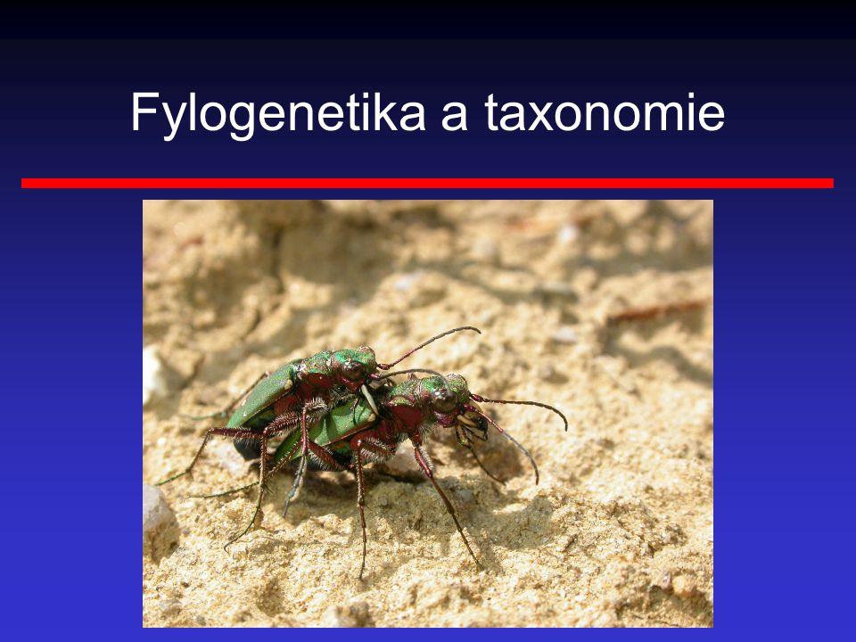 Monofyletický taxon zahrnuje nebo v minulosti zahrnoval pouze jediný druh, jehož bezprostřední předek nebyl příslušníkem tohoto taxonu musí zahrnovat výhradně druhy, které jsou si vzájemně příbuznější, než je kterýkoli z nich příbuzný s libovolným druhem řazeným do taxonu jiného dva druhy navzájem příbuznější než kterýkoli z nich s druhem třetím tehdy, když sdílejí společného předka, který zároveň není předkem druhu třetího