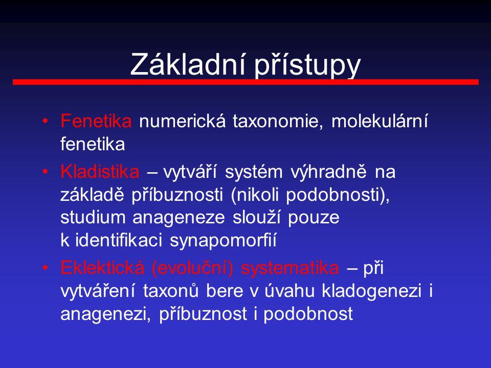 Základní přístupy Fenetika numerická taxonomie, molekulární fenetika Kladistika – vytváří systém výhradně na základě příbuznosti (nikoli podobnosti), studium anageneze slouží pouze k identifikaci synapomorfií Eklektická (evoluční) systematika – při vytváření taxonů bere v úvahu kladogenezi i anagenezi, příbuznost i podobnost