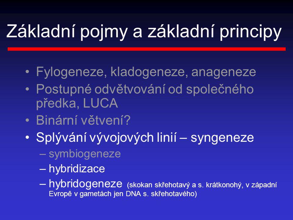 Základní pojmy a základní principy Fylogeneze, kladogeneze, anageneze Postupné odvětvování od společného předka, LUCA Binární větvení.
