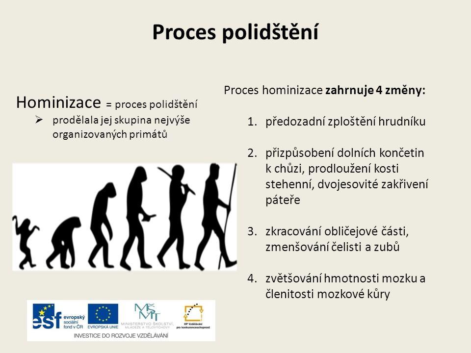 Proces polidštění Hominizace = proces polidštění  prodělala jej skupina nejvýše organizovaných primátů Proces hominizace zahrnuje 4 změny: 1.předozad