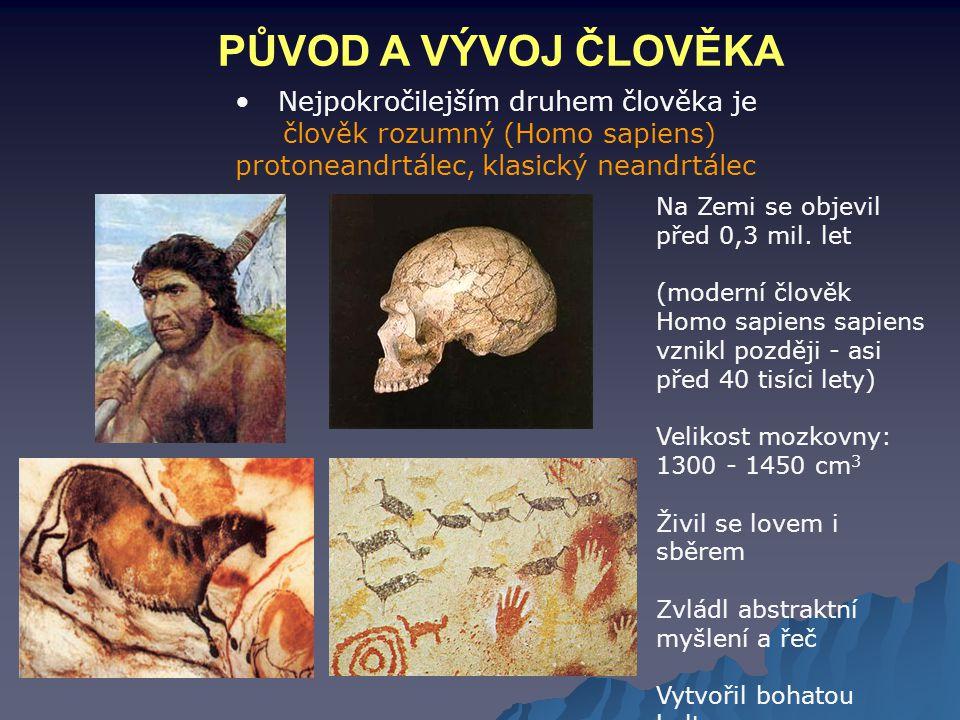 PŮVOD A VÝVOJ ČLOVĚKA Nejpokročilejším druhem člověka je člověk rozumný (Homo sapiens) protoneandrtálec, klasický neandrtálec Na Zemi se objevil před
