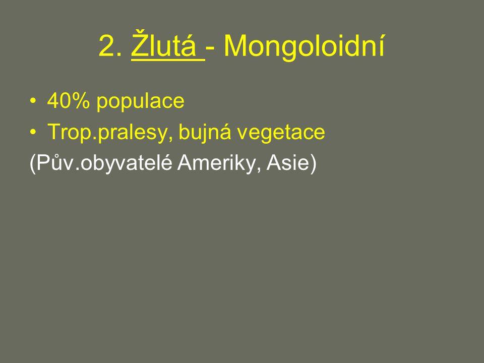 2. Žlutá - Mongoloidní 40% populace Trop.pralesy, bujná vegetace (Pův.obyvatelé Ameriky, Asie)