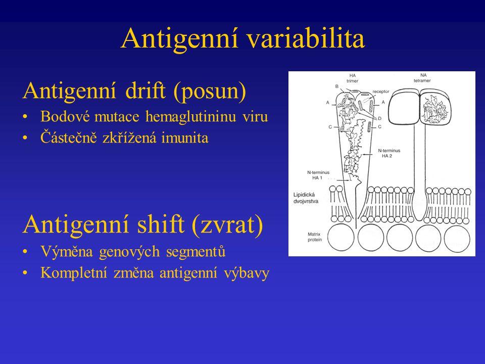 Antigenní variabilita Antigenní drift (posun) Bodové mutace hemaglutininu viru Částečně zkřížená imunita Antigenní shift (zvrat) Výměna genových segmentů Kompletní změna antigenní výbavy