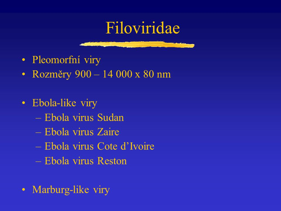Filoviridae Pleomorfní viry Rozměry 900 – 14 000 x 80 nm Ebola-like viry –Ebola virus Sudan –Ebola virus Zaire –Ebola virus Cote d'Ivoire –Ebola virus Reston Marburg-like viry