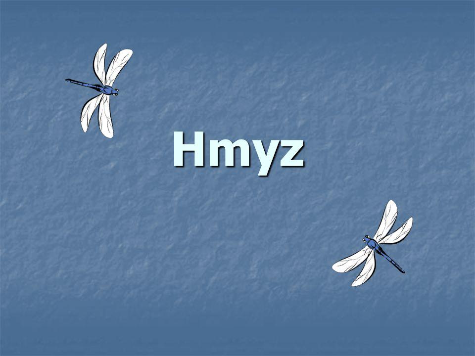 Hmyz: mnoho skupin (přes 2 miliony druhů) mnoho skupin (přes 2 miliony druhů) tělo tvoří : hlava, hruď a zadeček tělo tvoří : hlava, hruď a zadeček hlava:- 2 složené oči hlava:- 2 složené oči - tykadla - ústní ústrojí (sací, lízací, kousací) hruď:- 3 páry končetin hruď:- 3 páry končetin - 0 – 1 – 2 páry křídel zadeček zadeček