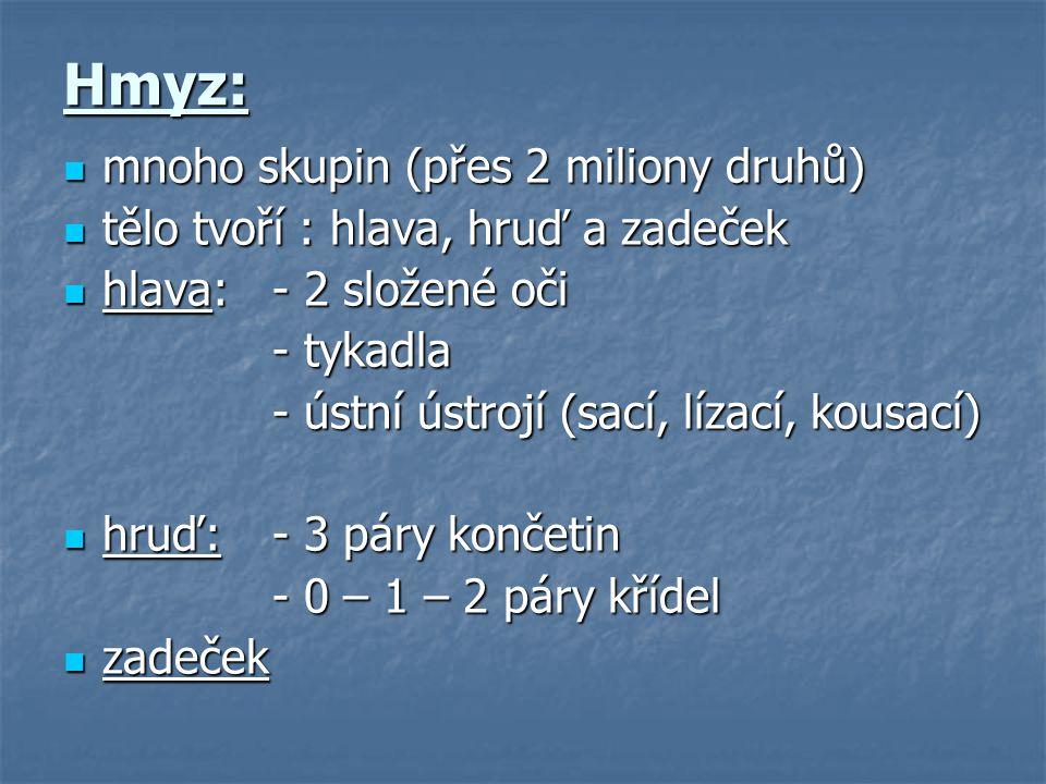 Autor: Mgr.Zuzana Šimečková Ve výukovém materiálu jsou použity autorské texty.
