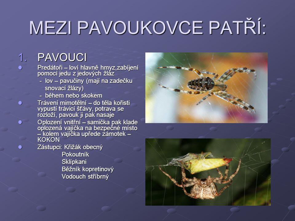MEZI PAVOUKOVCE PATŘÍ: 1.PAVOUCI Predátoři – loví hlavně hmyz,zabíjení pomocí jedu z jedových žláz Predátoři – loví hlavně hmyz,zabíjení pomocí jedu z jedových žláz - lov – pavučiny (mají na zadečku - lov – pavučiny (mají na zadečku snovací žlázy) snovací žlázy) - během nebo skokem - během nebo skokem Trávení mimotělní – do těla kořisti vypustí trávicí šťávy, potrava se rozloží, pavouk ji pak nasaje Trávení mimotělní – do těla kořisti vypustí trávicí šťávy, potrava se rozloží, pavouk ji pak nasaje Oplození vnitřní – samička pak klade oplozená vajíčka na bezpečné místo – kolem vajíčka upřede zámotek – KOKON Oplození vnitřní – samička pak klade oplozená vajíčka na bezpečné místo – kolem vajíčka upřede zámotek – KOKON Zástupci: Křižák obecný Zástupci: Křižák obecný Pokoutník Pokoutník Sklípkani Sklípkani Běžník kopretinový Běžník kopretinový Vodouch stříbrný Vodouch stříbrný