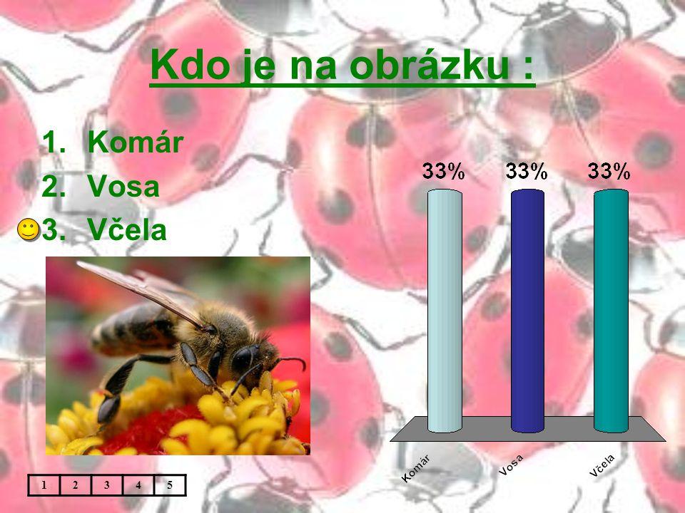 Kdo je na obrázku : 12345 1.Komár 2.Vosa 3.Včela