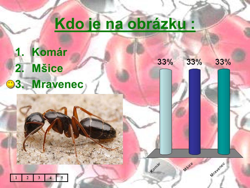 Kdo je na obrázku : 1.Komár 2.Mšice 3.Mravenec 12345