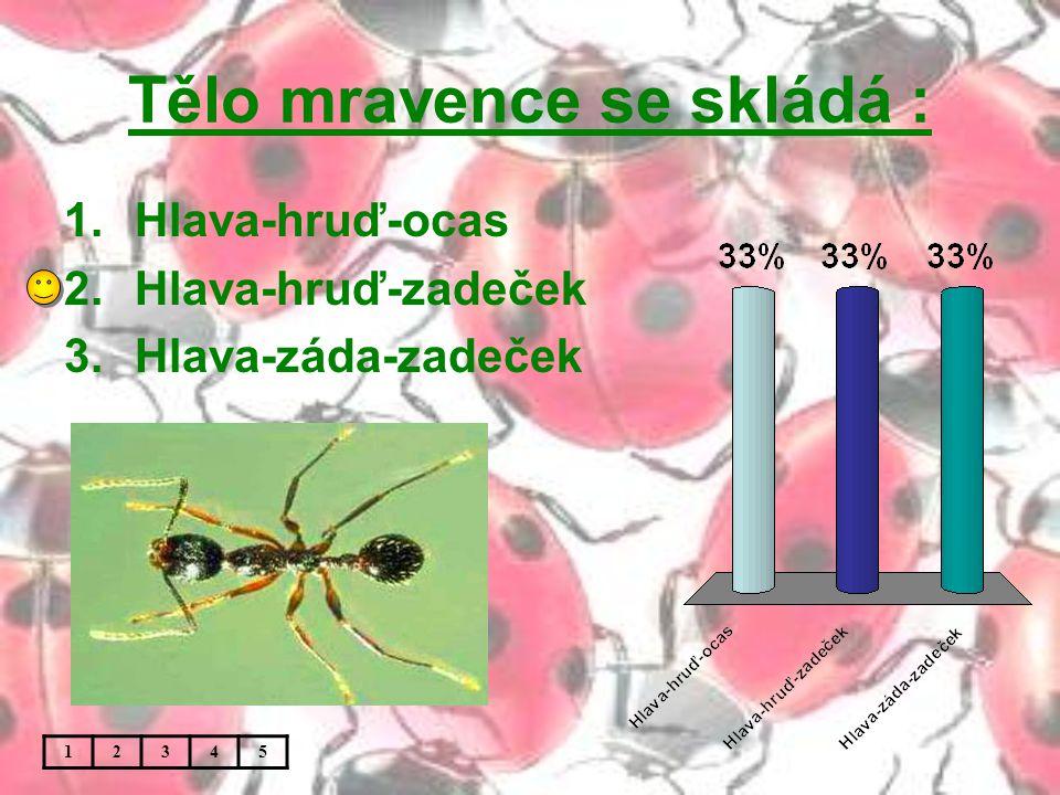 Tělo mravence se skládá : 1.Hlava-hruď-ocas 2.Hlava-hruď-zadeček 3.Hlava-záda-zadeček 12345