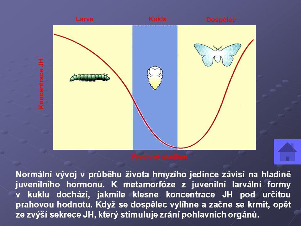 Normální vývoj v průběhu života hmyzího jedince závisí na hladině juvenilního hormonu.