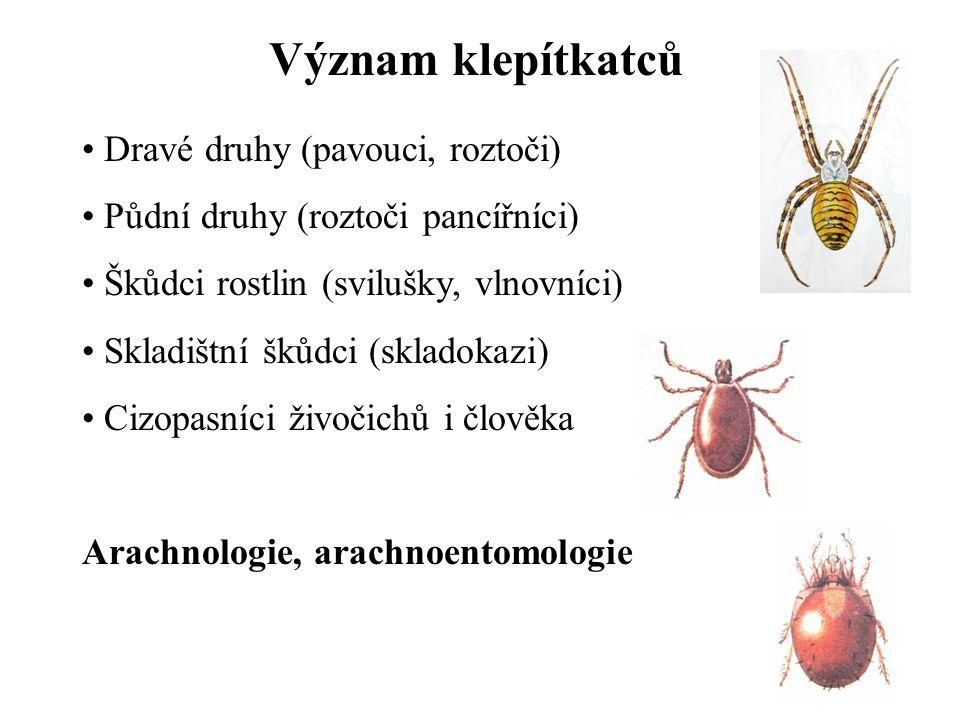 Význam klepítkatců Dravé druhy (pavouci, roztoči) Půdní druhy (roztoči pancířníci) Škůdci rostlin (svilušky, vlnovníci) Skladištní škůdci (skladokazi)