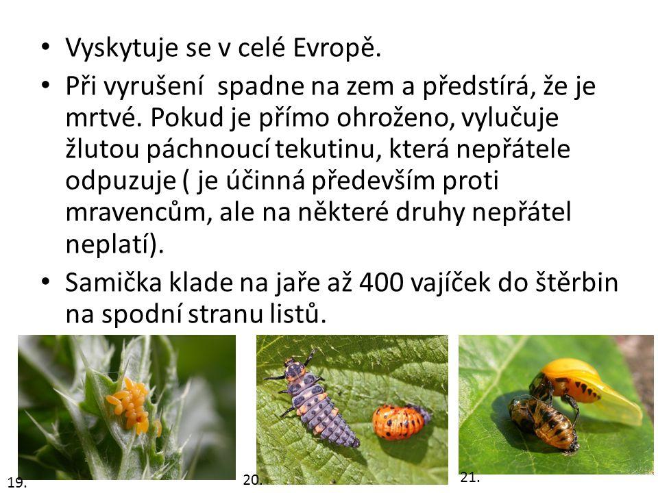 Vyskytuje se v celé Evropě.Při vyrušení spadne na zem a předstírá, že je mrtvé.
