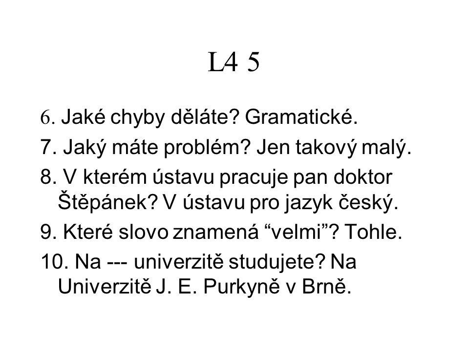L4 5 6. Jaké chyby děláte. Gramatické. 7. Jaký máte problém.