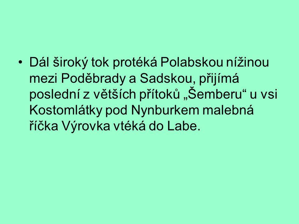 """Dál široký tok protéká Polabskou nížinou mezi Poděbrady a Sadskou, přijímá poslední z větších přítoků """"Šemberu"""" u vsi Kostomlátky pod Nynburkem malebn"""