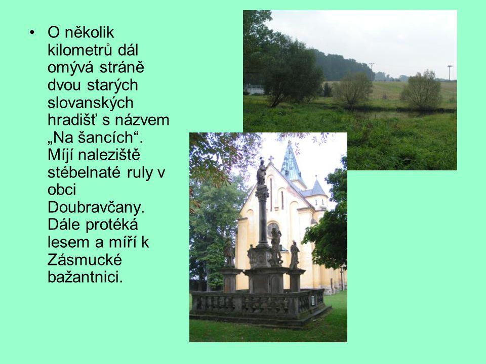 """O několik kilometrů dál omývá stráně dvou starých slovanských hradišť s názvem """"Na šancích"""". Míjí naleziště stébelnaté ruly v obci Doubravčany. Dále p"""