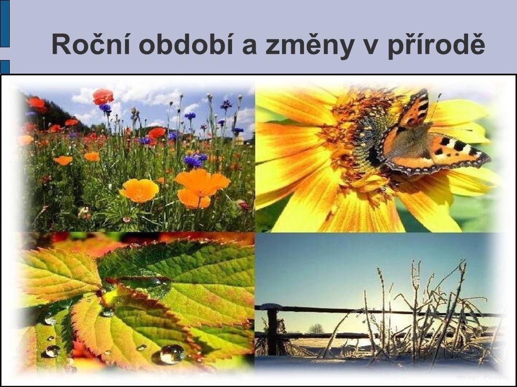 Jaro Léto Podzim Zima Střídání ročních období Během roku se u nás vystřídají 4 roční období: