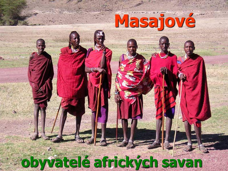 Masajové obyvatelé afrických savan