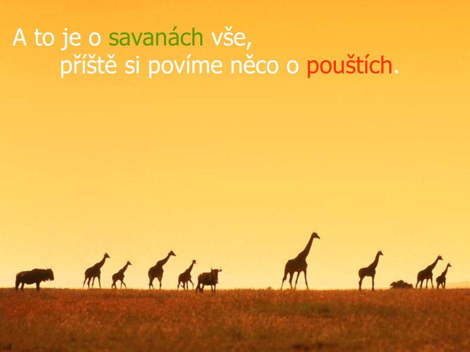 A to je o savanách vše, příště si povíme něco o pouštích.