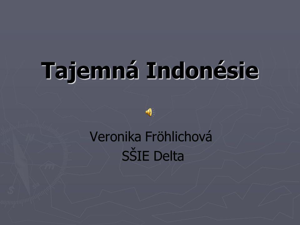 Tajemná Indonésie Veronika Fröhlichová SŠIE Delta