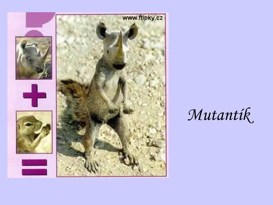 Mutantík