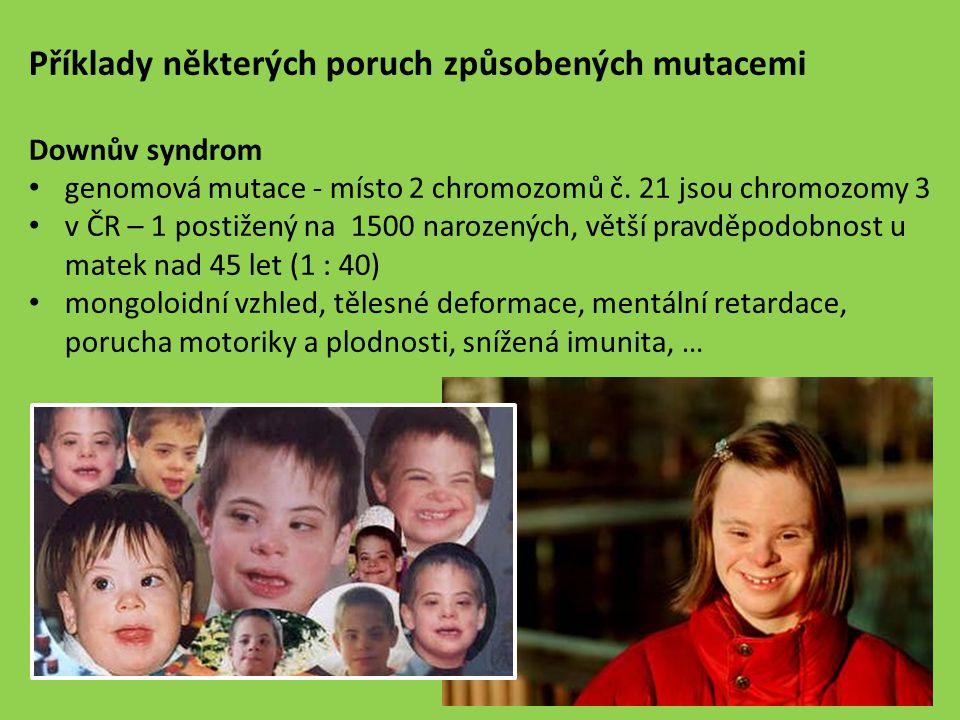 Příklady některých poruch způsobených mutacemi Downův syndrom genomová mutace - místo 2 chromozomů č. 21 jsou chromozomy 3 v ČR – 1 postižený na 1500