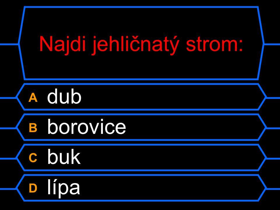 Hymna ČR je: A Beskyde, Beskyde B Kde domov můj C Okolo Frýdku D Skákal pes