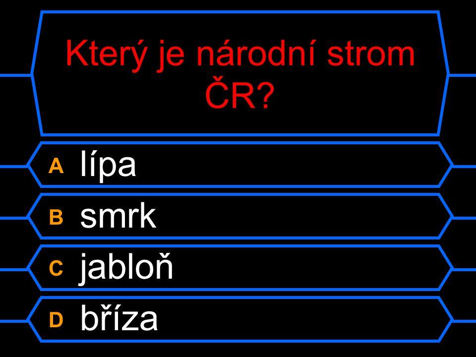 Otázka 13