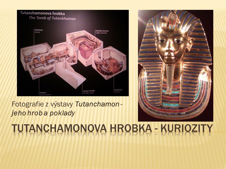  V Tutanchamonově hrobce bylo nalezeno i několik předmětů, které můžeme zařadit mezi kuriozity – zajímavé a neobvyklé předměty.