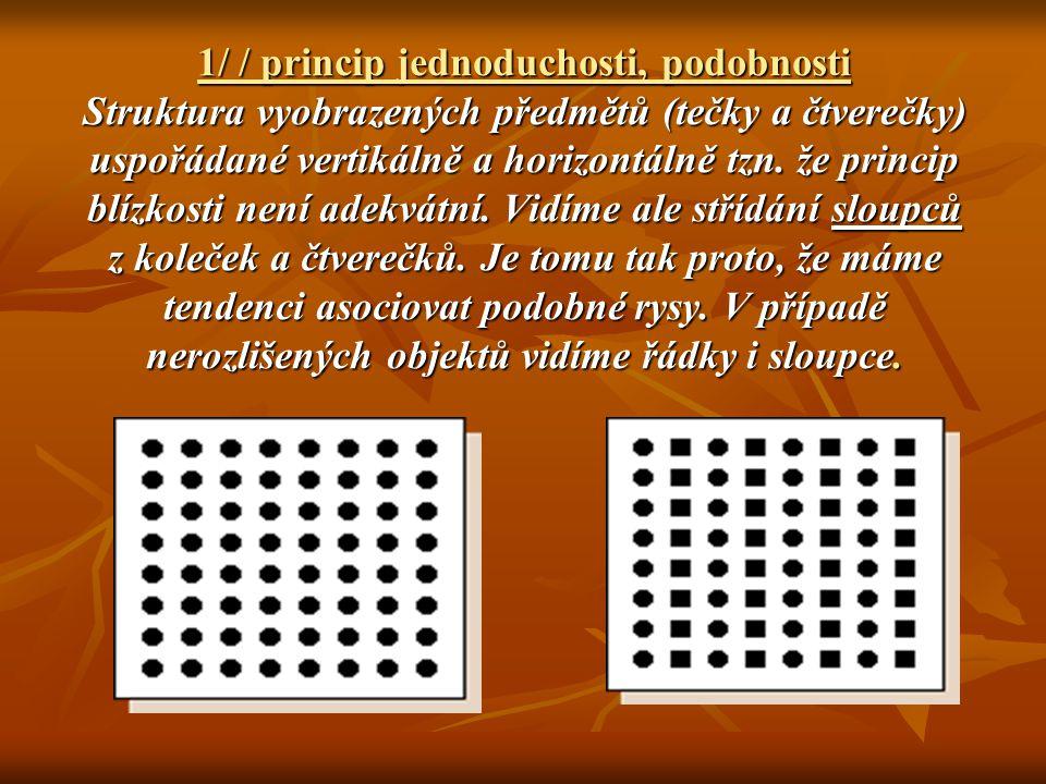2/ Princip blízkosti V percepčním procesu se sousední body nemusí dotýkat, aby byly logicky spojovány jako části většího významového, smysluplného vzorce.