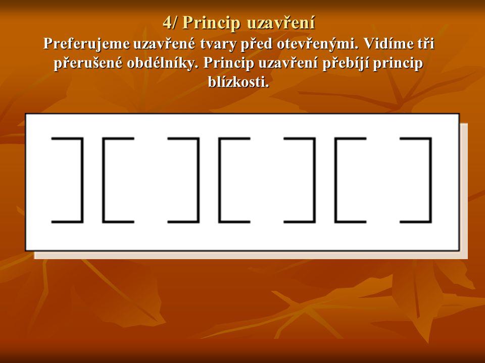 5/ Princip preference menšího tvaru Menší oblasti máme tendenci vidět jako figury proti většímu pozadí.Vidíme kříž spíše než bílé pozadí..
