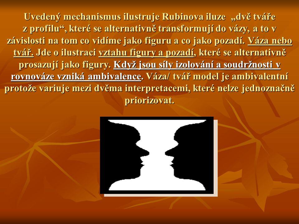 """Uvedený mechanismus ilustruje Rubinova iluze """"dvě tváře z profilu , které se alternativně transformují do vázy, a to v závislosti na tom co vidíme jako figuru a co jako pozadí."""