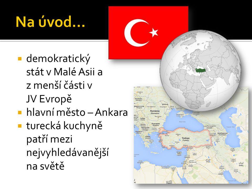  demokratický stát v Malé Asii a z menší části v JV Evropě  hlavní město – Ankara  turecká kuchyně patří mezi nejvyhledávanější na světě