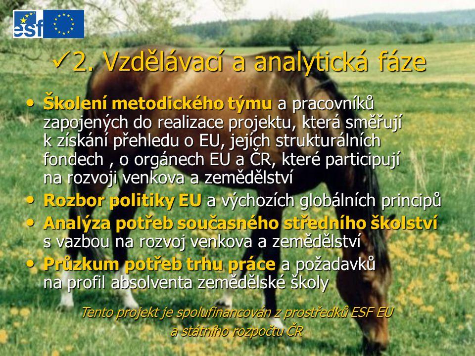 2. Vzdělávací a analytická fáze 2. Vzdělávací a analytická fáze Školení metodického týmu a pracovníků zapojených do realizace projektu, která směřují