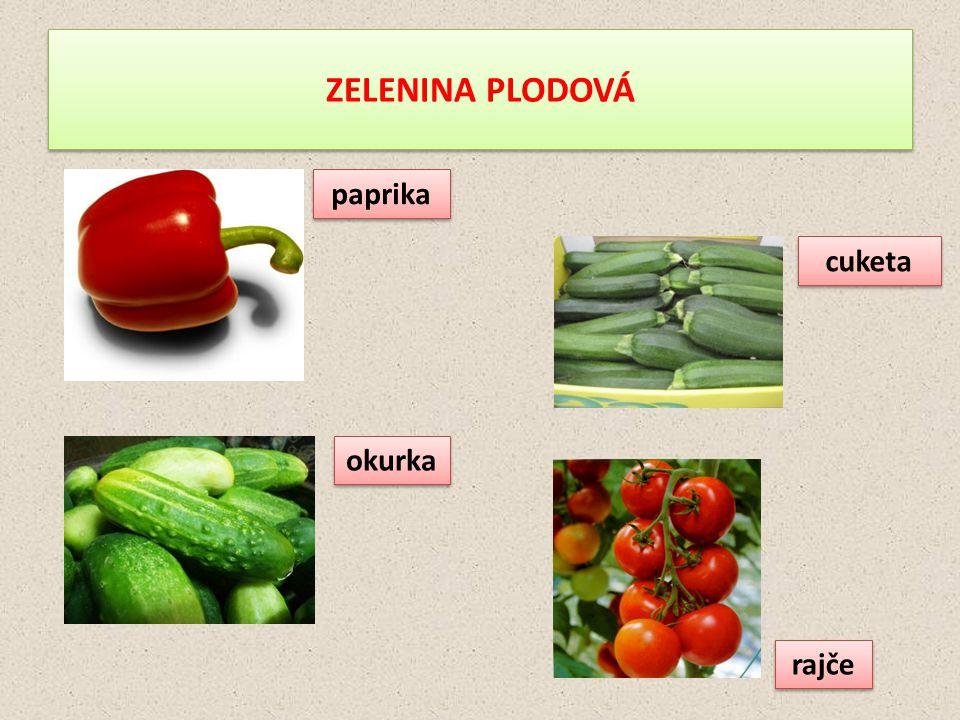 ZELENINA PLODOVÁ paprika okurka cuketa rajče