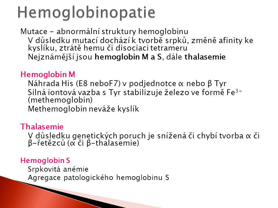 Mutace - abnormální struktury hemoglobinu V důsledku mutací dochází k tvorbě srpků, změně afinity ke kyslíku, ztrátě hemu či disociaci tetrameru Nejzn