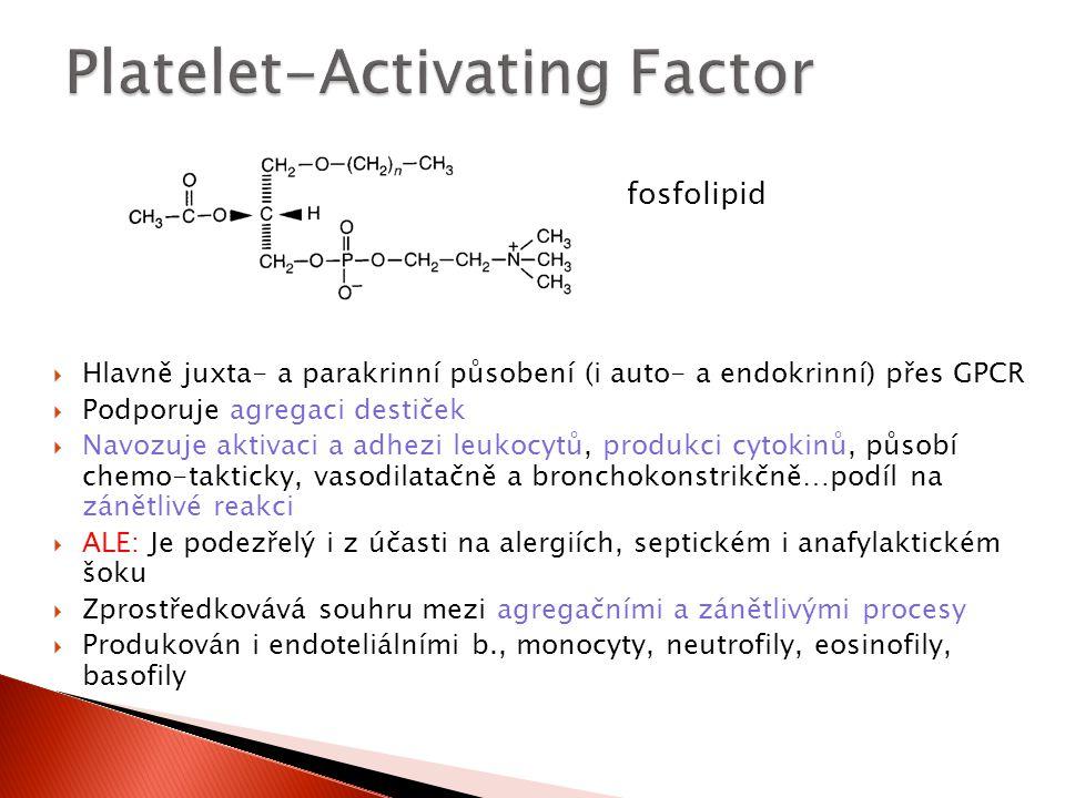  Hlavně juxta- a parakrinní působení (i auto- a endokrinní) přes GPCR  Podporuje agregaci destiček  Navozuje aktivaci a adhezi leukocytů, produkci