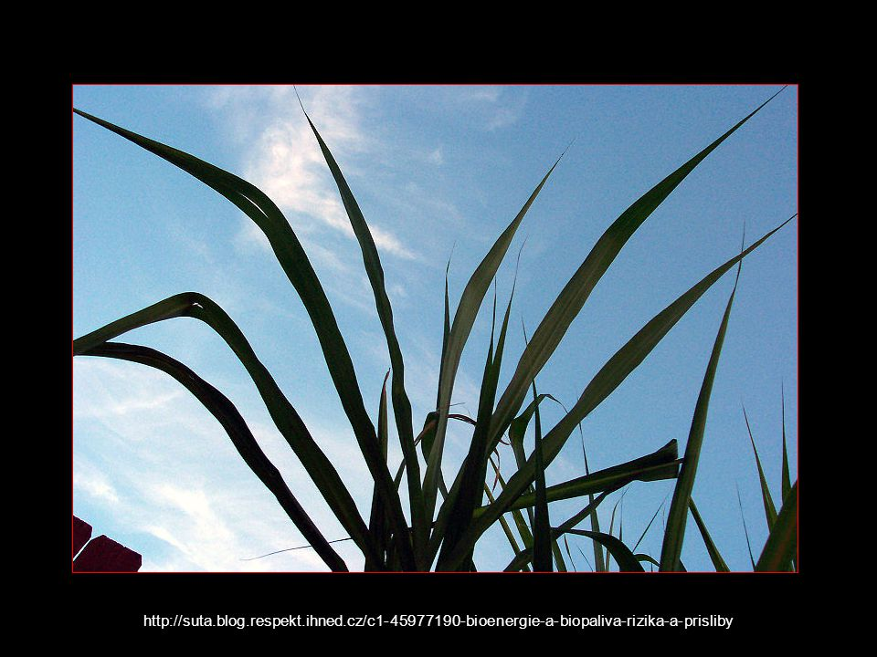 http://suta.blog.respekt.ihned.cz/c1-45977190-bioenergie-a-biopaliva-rizika-a-prisliby